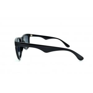 Polarized Pantos sunglasses