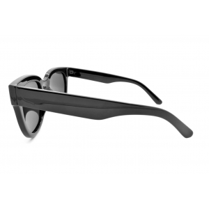 Polarized sunglasses Pantos oversized