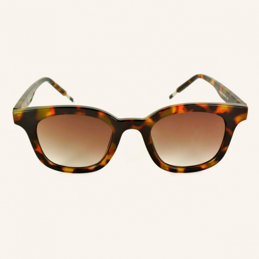 Pantos sunglasses with metal temples tips